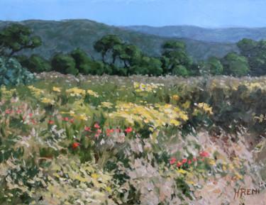 Herbes et fleurs sauvages en Provence